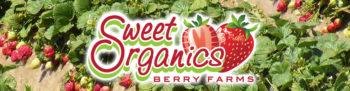 Sweet Organics